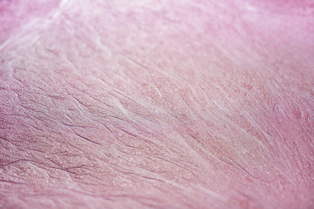 Pink sand backgrounds