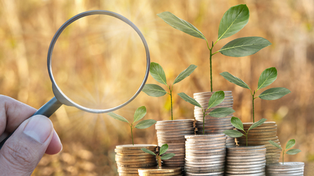 Magnifying glass of growthing money on nature blur background