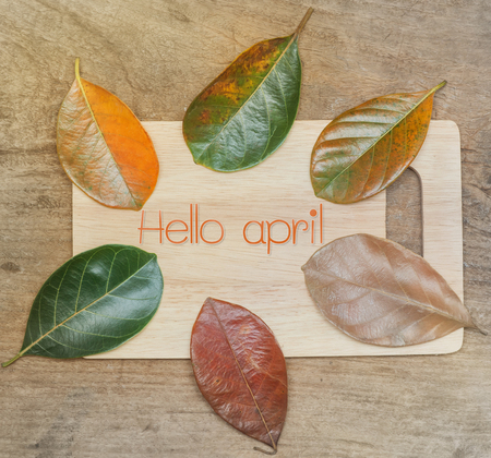 Flat lay of Hello april on orange text over gradient leaves different stage autumn senescence foliage background