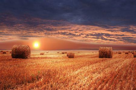 Rural landscape. Sundown on farm field. photo