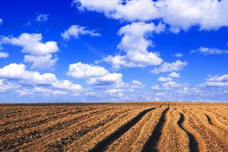 Plowed field. Viev on plowed field and blue sky.