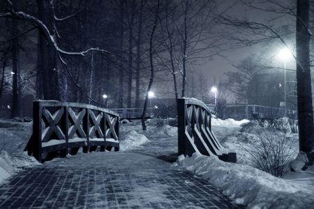 Winter park at night. Frosty winter in dark park.