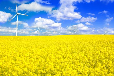 Windmills conceptual image. Windmill on yellow field in summer. Stock Photo