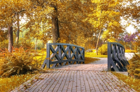 Autumn scenery. Beautiful gold fall in park. Stock Photo