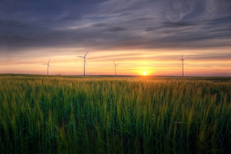 Rural landscape. HDR picture of sundown over the green field at summer. photo