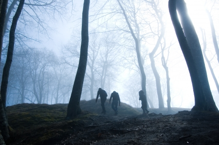 Nature. People in foggy dark forest.