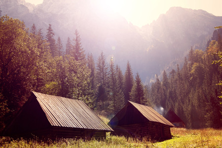 Autumn scenery. Small wooden houses and beautiful gold fall in mountains.