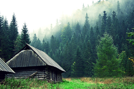 Small old wooden house in foggy forest. Mountains scenery. Nature conceptual image. Standard-Bild