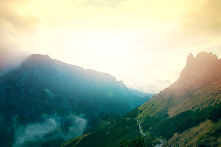 Mist in de bergen. Fantasie en kleurrijke natuur landschap. Natuur conceptueel beeld. Stockfoto