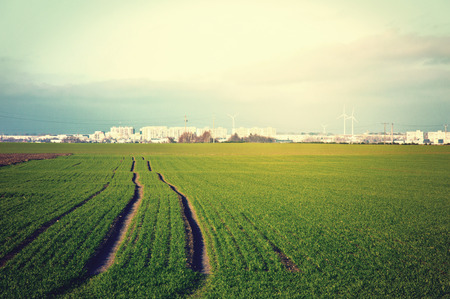 agglomeration: Green field with fresh grass and agglomeration in the distance. Vintage stylized picture.
