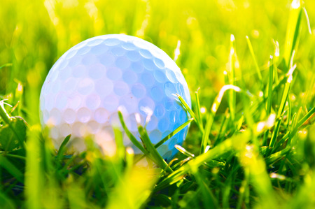golf bag: Golf game. Golf balls in grass. Stock Photo
