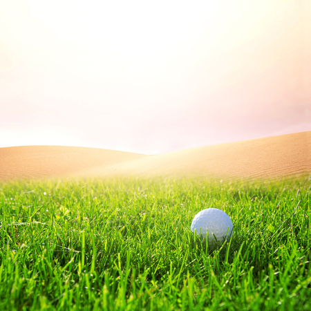 golfball: Golfball in the green grass on the golf course. Sport conceptual image.