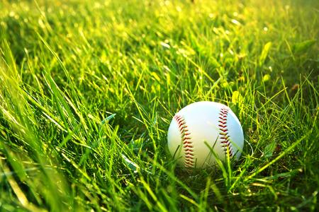 outfield: Baseball game. Baseball ball in grass.