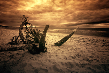 Sea and ocean. Dark beach and sea in sepia colors. Nature concept.