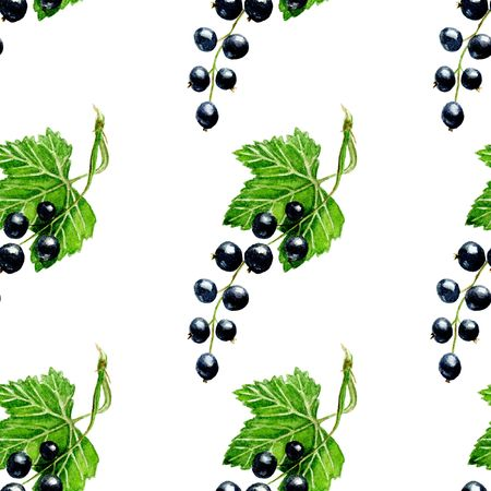 textile care: black currant seamless pattern. Background design for tea, ice cream, natural cosmetics, candy and bakery with black currant filling, health care products. Best for textile, wrapping paper.