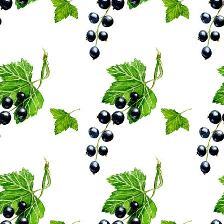 black currant seamless pattern. Background design for tea, ice cream, natural cosmetics, candy and bakery with black currant filling, menu. Best for textile, wrapping paper.
