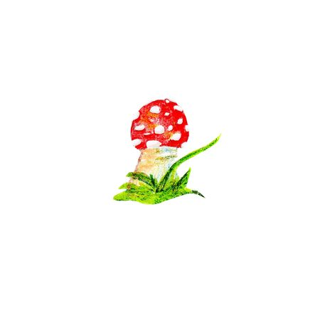 color pencils fly agaric mushrooms. Isolated on white background.