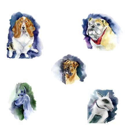 Set of Watercolor dog - a symbol of 2018. Illustration of a dog Stock Photo