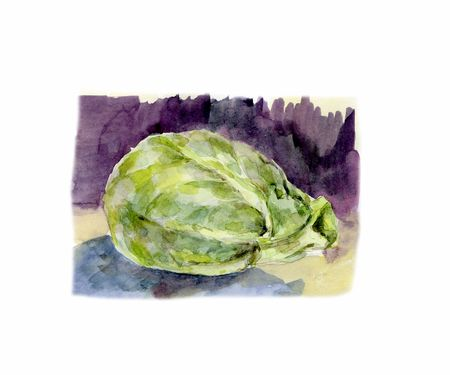 Watercolor illustration of a head of cabbage.