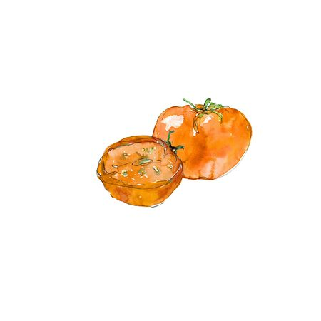 A set of tomatoes. Watercolor illustration. Cut tomato. Stock Photo