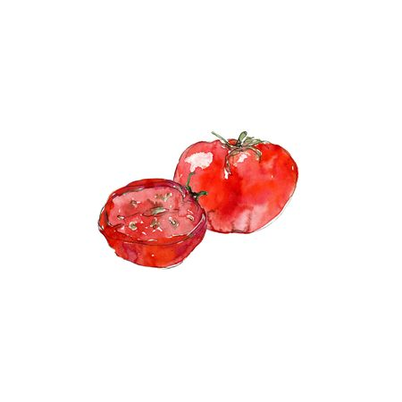 A set of tomatoes. Watercolor illustration. A slice of tomato seeds. Stock Photo
