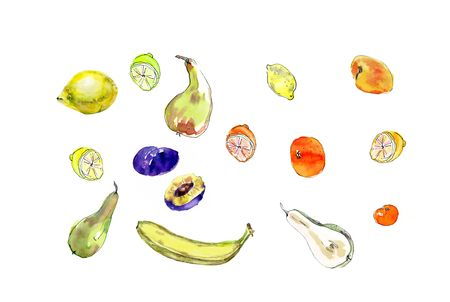 Watercolor painted set of fruits. Hand drawn food design elements isolated on white background