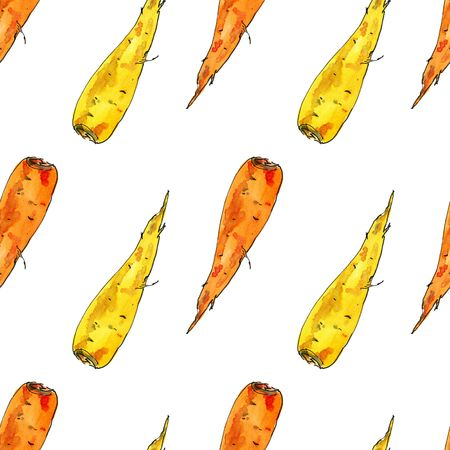 Seamless pattern of watercolor carrot. Hand drawn food design elements isolated on white background.