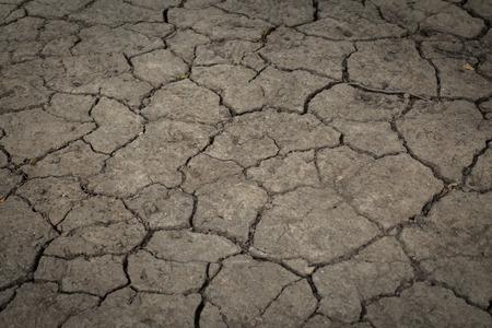 arid: arid land.