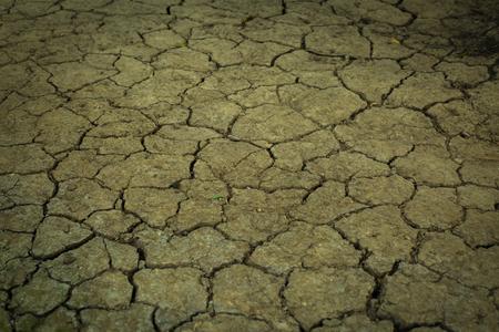 mundo contaminado: tierras áridas.