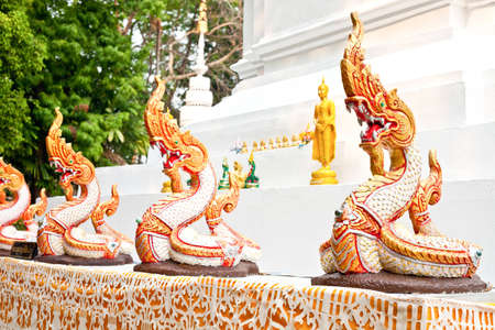 naga in thailand photo
