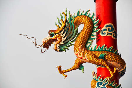 china dragon Stock Photo - 13231203