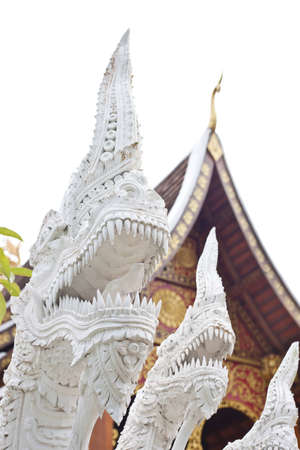 white naga in front of thai church  photo