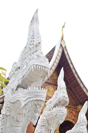 white naga in front of thai church  photo