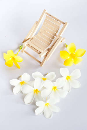white and yellow flower with beach chair  photo