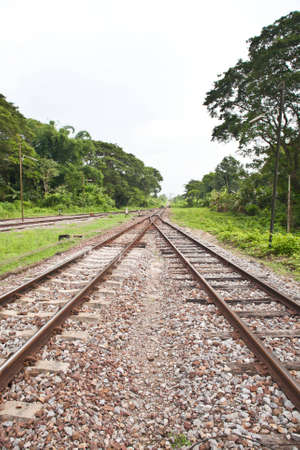 Cross Train way in forest Stock Photo - 16212335