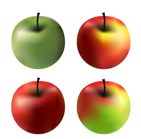 fruit clipart: 4 vector apples with different colors isolated on white Illustration