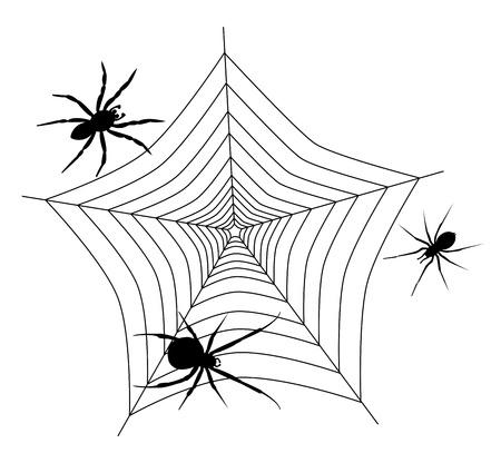 We zien spinnenweb met drie verschillende spinnen Stock Illustratie