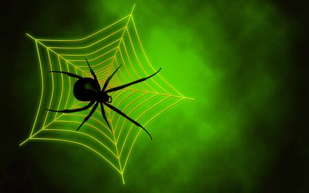 We see Spider web with big spider on green background photo