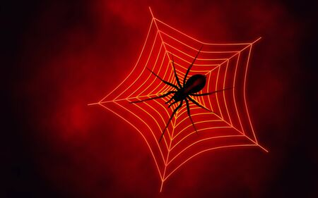 We see Spider web with big spider on red background photo