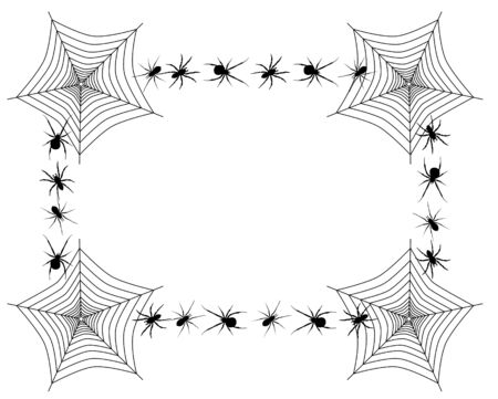 spider net: Vector border with spider webs and different spiders