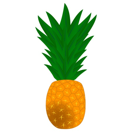 We see pineapple cartoon vector illustration Vector