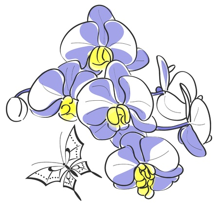 Vector of Orchids and butterfly on white Vector
