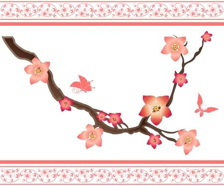 복숭아: 사쿠라 요소와 나비의 벡터 이미지 일러스트