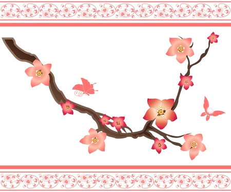 peach tree: Vector image of sakura elements and butterflies