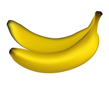Vector of two Realistic bananas on white