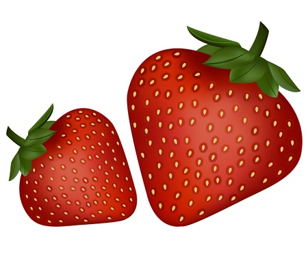 Delicious Strawberries on white Vector