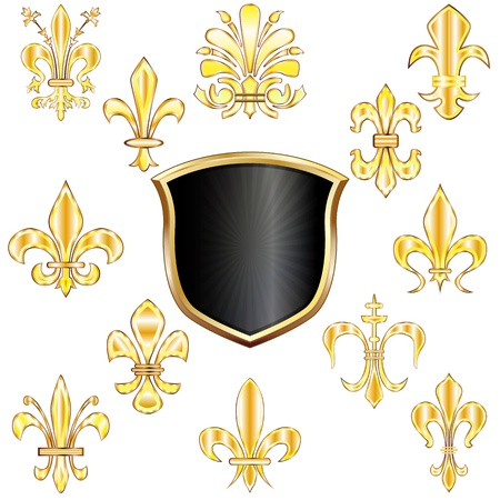 set of golden Fleur-de-lis and shield on white Vector