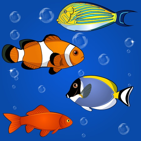 Vector of tropical fish set on white background Vector