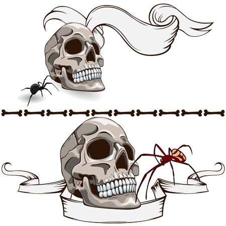 Vector banners with human skulls and spiders on white background