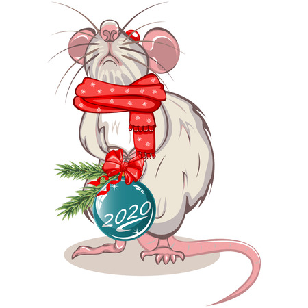 Vector of cartoon white rat in warm scarf with Christmas ball in paws